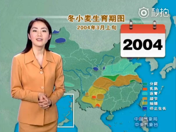 chinese-tv-presenter-doesnt-age-looks-young-yang-dan-_0008_2004