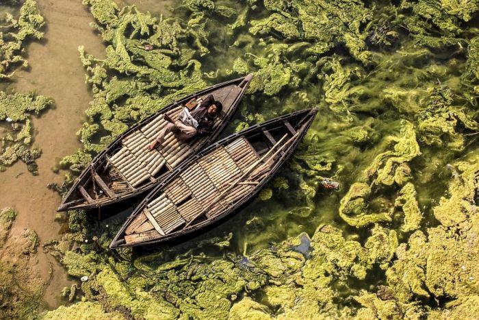Boatman, Travel Finalist