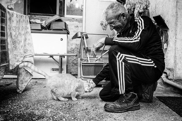 I-photograph-men-with-their-cats-and-the-result-is-cuteness-overload-5b03bab8836ba__700 I Photograph Men With Their Cats And The Result Is Cuteness Overload! Design Photography Random