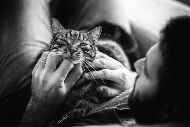 IMG_9092-170915-5b02f26544b32__700 I Photograph Men With Their Cats And The Result Is Cuteness Overload! Design Photography Random