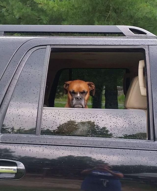 No le hace gracia irse tan pronto del parque