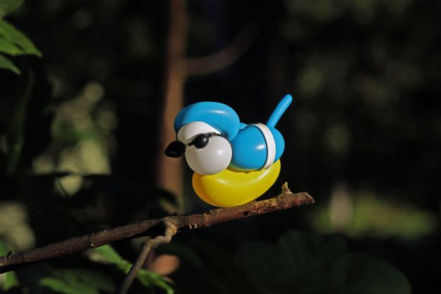 Bluetit-5b5640940b1bd__880 I Like To Make Birds Out Of Balloons Art Design Random