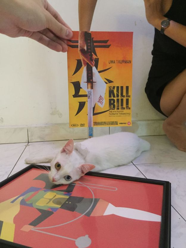 """bill-5b3b82c61453e__880 Photographer Follows Cats Around To """"Insert"""" Them Behind Famous Movie Posters, And The Result Is Purrfect Design Random"""