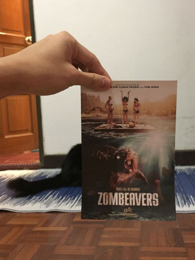 """zombeaver-5b3b82f6976d2__880 Photographer Follows Cats Around To """"Insert"""" Them Behind Famous Movie Posters, And The Result Is Purrfect Design Random"""