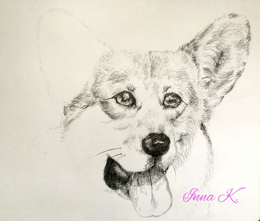 I Make Exclusive, Life-Like Portraits Of Pets And Here Is The