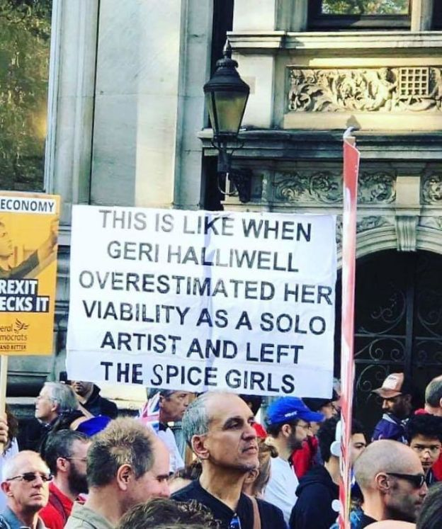 5bcd69ea6db7b_nwxhar7txit11__700 25+ Of The Funniest Signs From The Anti-Brexit March Design Random
