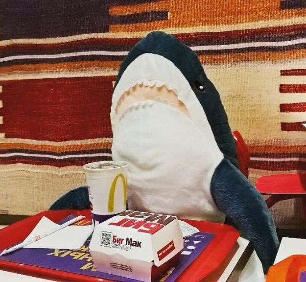 BhMKnfCDXWg-png__700 IKEA Released An Adorable Plush Shark And People Are Losing Their Minds Over It Design Random