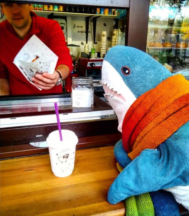 Bo556y8nwID-png__700 IKEA Released An Adorable Plush Shark And People Are Losing Their Minds Over It Design Random
