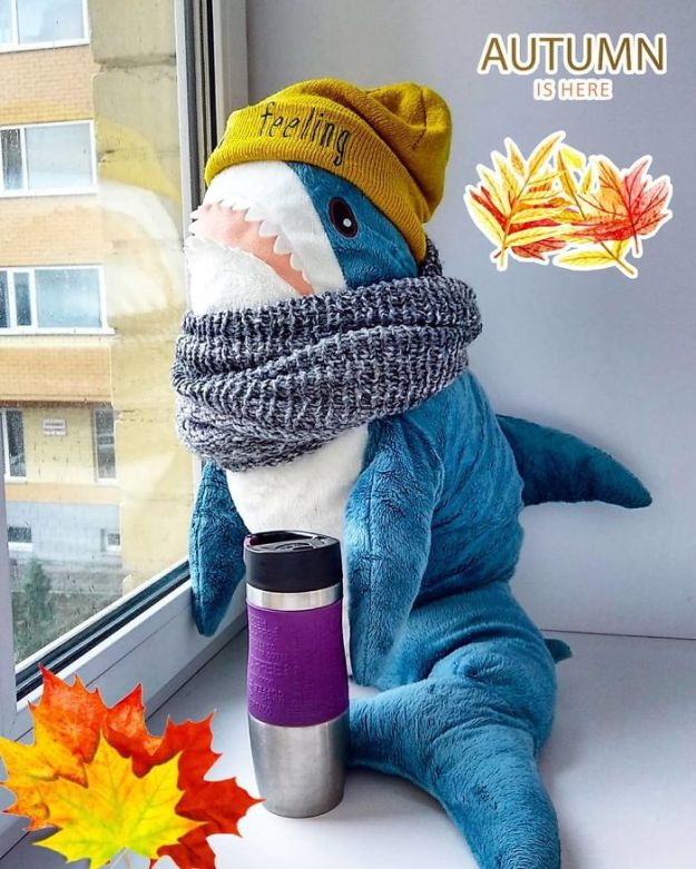 BoUN6fkhBdb-png__700 IKEA Released An Adorable Plush Shark And People Are Losing Their Minds Over It Design Random