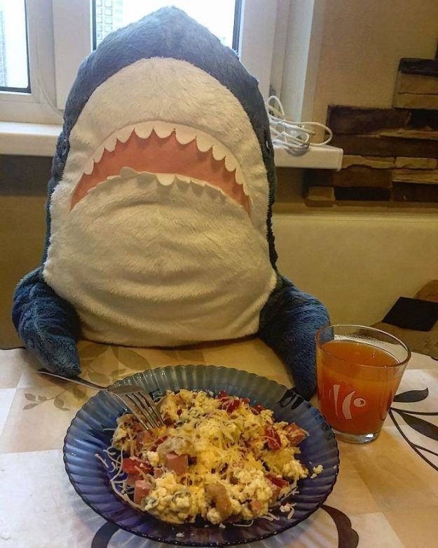 BpWfNY1HV0I-png__700 IKEA Released An Adorable Plush Shark And People Are Losing Their Minds Over It Design Random