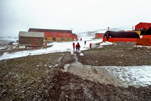 interesting-antarctica-facts-south-pole-5bd9c2009101a__700 27 Unbelievable Facts About Antarctica That Are 100% True Design Random