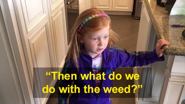 schoolgirl-tells-teacher-father-growing-weed-18 Daughter Tells Her Teachers That Dad Is Growing 'A Ton Of Weed' At Home, And It Escalates Hilariously Design Random