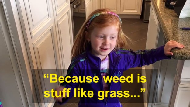 schoolgirl-tells-teacher-father-growing-weed-4 Daughter Tells Her Teachers That Dad Is Growing 'A Ton Of Weed' At Home, And It Escalates Hilariously Design Random