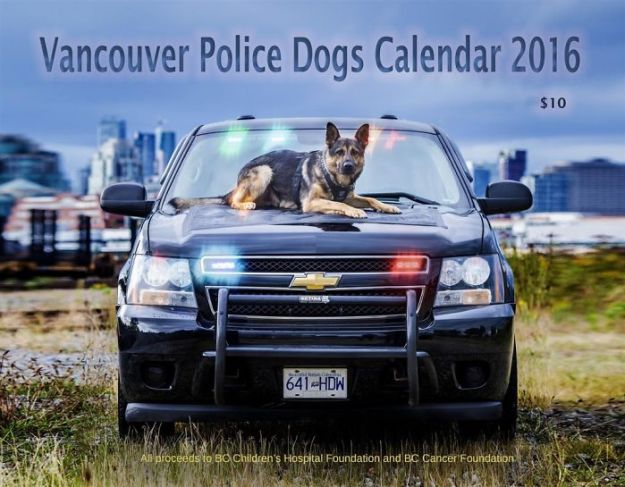 vancouver-police-department-charity-dog-calendar-2019-13-5bd16e2b79adb__700 Vancouver Police Canine Unit Just Released Their 2019 Charity Calendar And It's Badass Design Random
