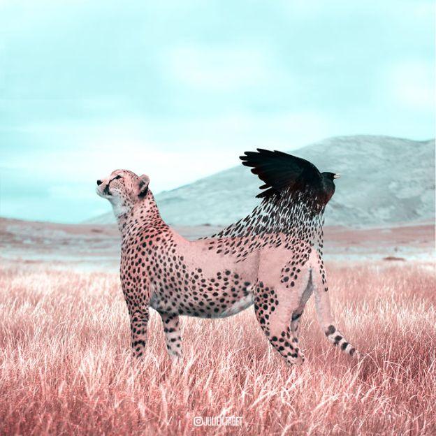 Cheetah-5bdb909a4a742__700 Here's How I Imagine Animals Behave When You Aren't Looking (10+ Pics) Design Random