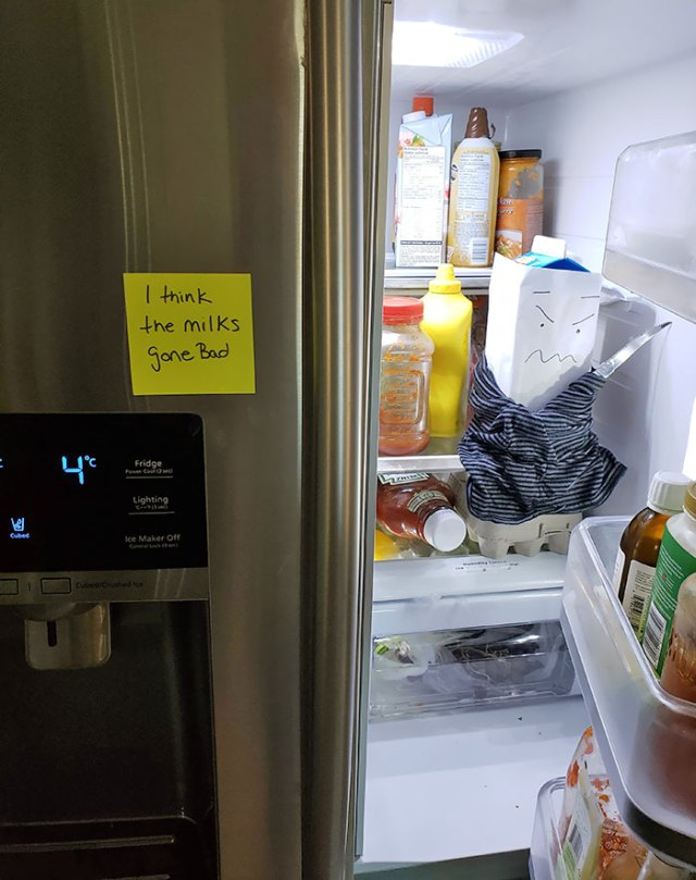 My Wife Has Been Waiting For 2 Days For Me To Open Fridge