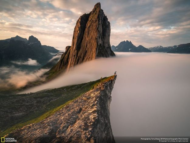 national-geographic-nature-photographer-of-the-year-2018-winner-146-5c0a36b5823f5__880 50 Of The Most Incredible Photos Of The National Geography Photo Contest Of 2018 Design Photography Random