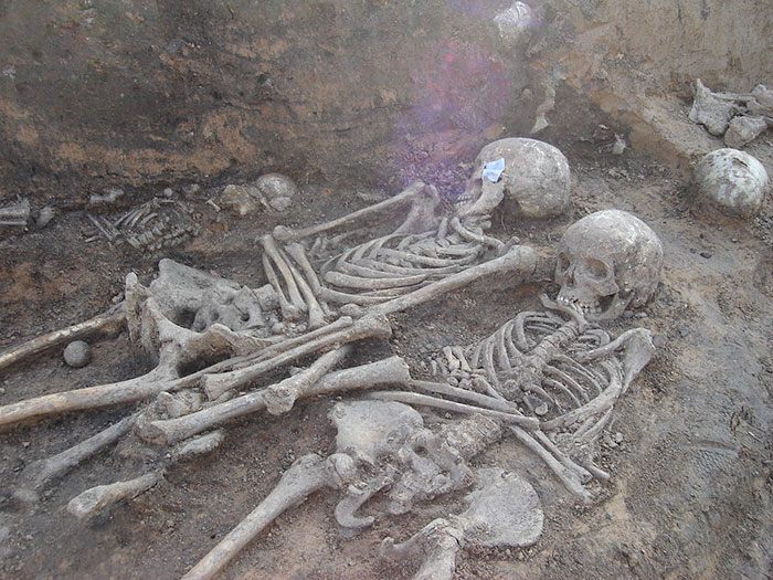 Bacteria That Caused The Black Death Plague Also Found In Skeletons From 3800 Bc