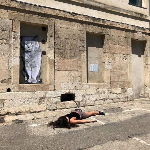 Frente al gato de Arles