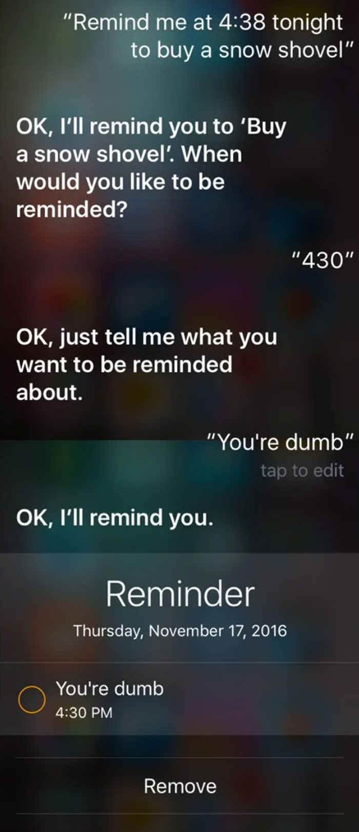 A Conversation With Siri