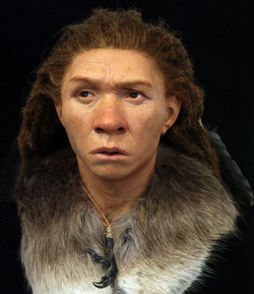 a 5d38ec4488a92  700 - Antepassados: Como eram as pessoas antes de nós?