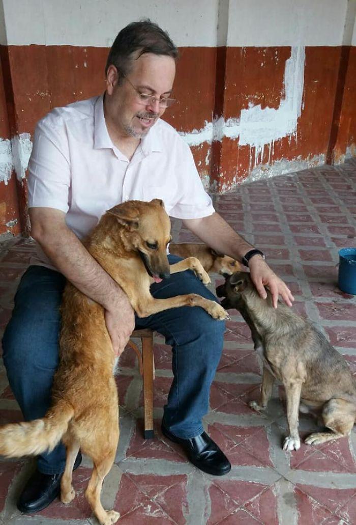 Brazilian priest welcomes stray dogs inside church to be adopted 5daff1fd674fe  700 - O que fez o cachorro ao ver a porta da igreja aberta?