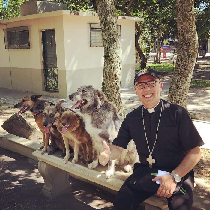 Brazilian priest welcomes stray dogs inside church to be adopted 5daff2f342876  700 - O que fez o cachorro ao ver a porta da igreja aberta?
