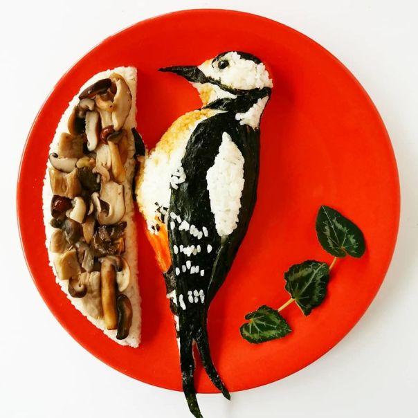 Woodpecker Delight