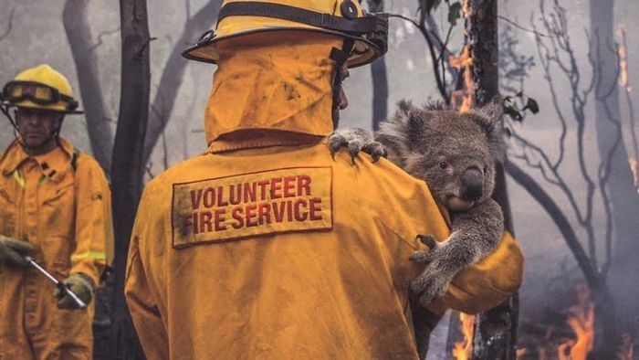 This Fire Fighter (And All Ff's) Saving The People, Animals, And Homes In Australia