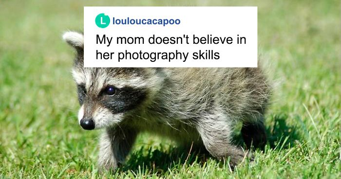 Mom Doesn't Believe Her Photos Are Any Good, So Her Son Posts Them On The Internet To See What Others Think