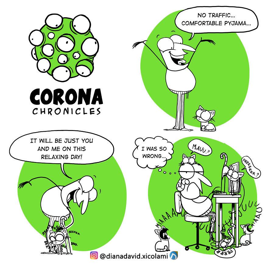 Balikpapanku - 25 things that happened during the CORONA VIRUS pandemie 5e907e33e01aa png  880