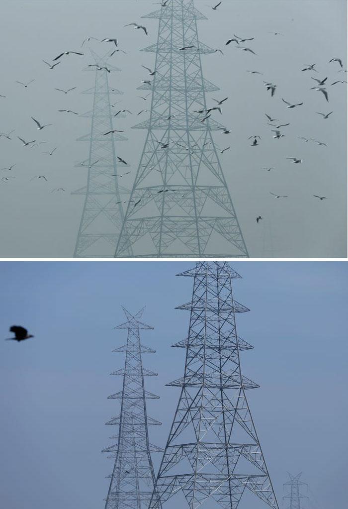 Electricity Pylons, New Delhi, India