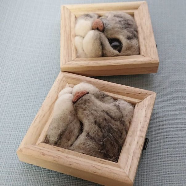 Artist Creates Realistic 3D Frames Of Cats And They Are Perfect!
