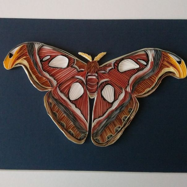 On Edge Paper Quilling Artist