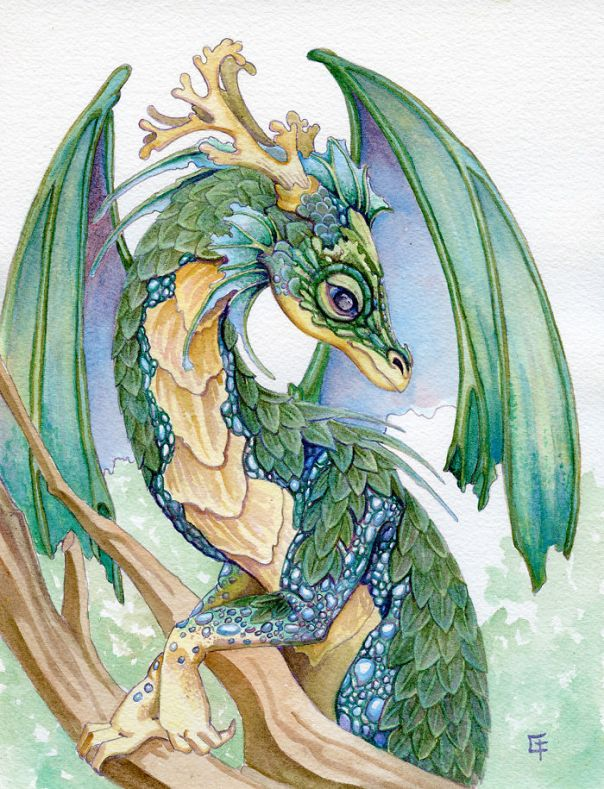 Pearl Sided Forest Dragon