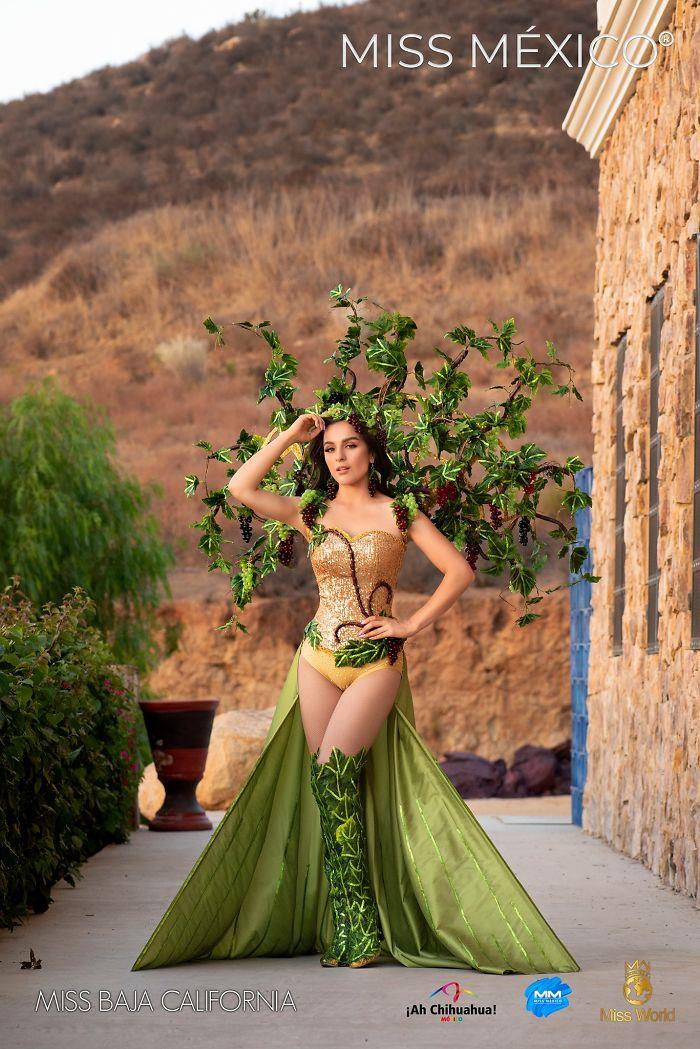 Miss Baja California, Daniela Pedroza