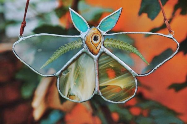 Fern Moth