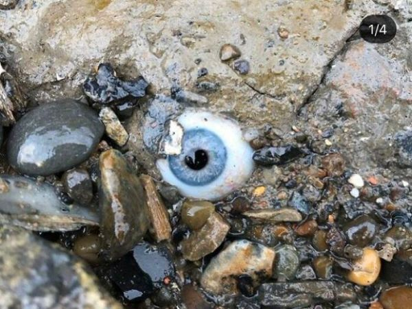 Guy Found A Glass Eye Embedded In The Rock At A Beach