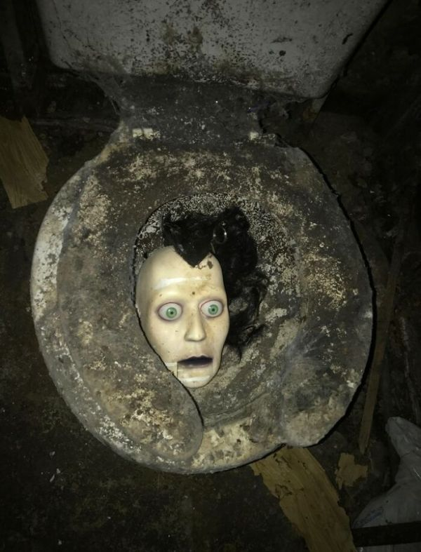 I'm A Contractor. Bought An Abandoned/Foreclosed Home To Renovate. This Was In The Basement Bathroom. What. The. F.