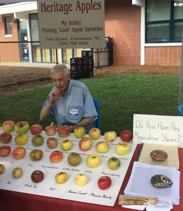 This Man's Collection Of Lost Apples Varieties