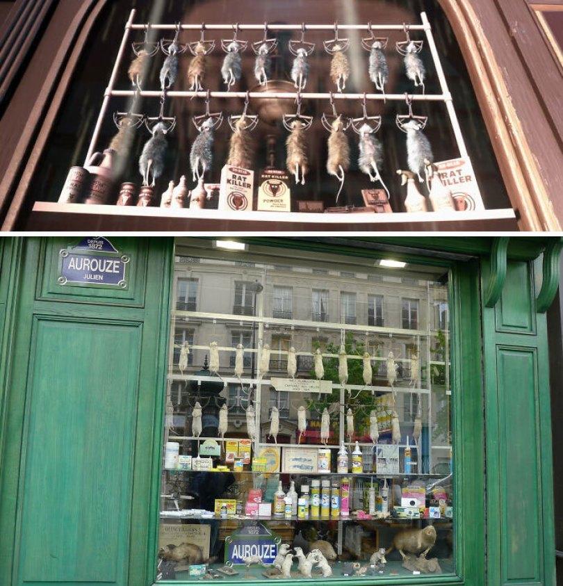 A loja com ratos mortos na vitrine é baseada em uma loja da vida real em Paris, França, chamada Aurouze