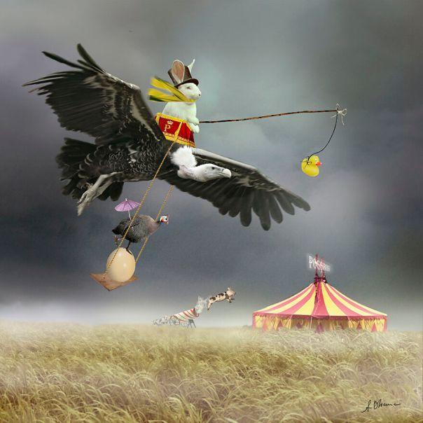 Circus Poggibonsi