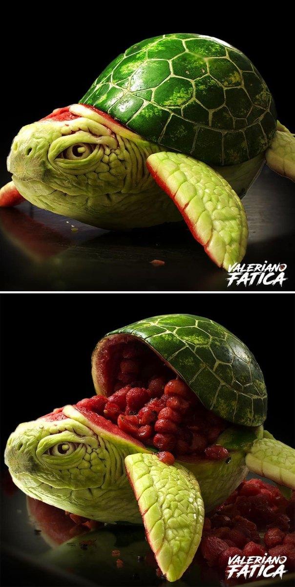 Turtle – Watermelon
