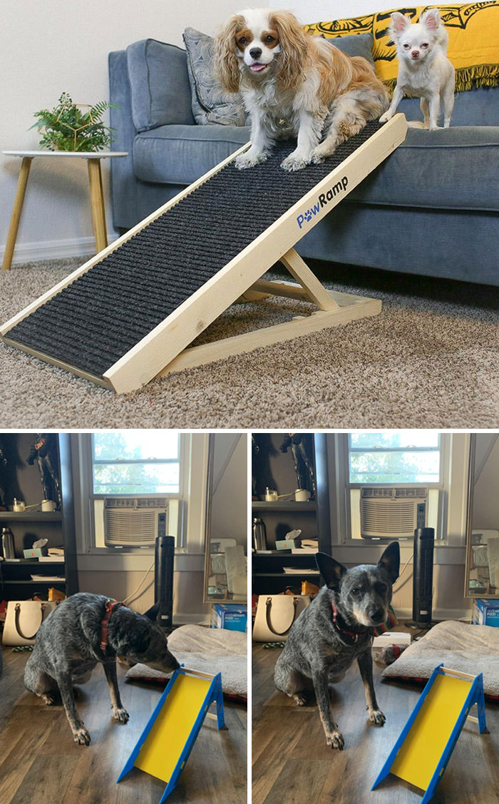 Mom Ordered Steps For The Dog. What She Thought She Ordered vs. What She Got