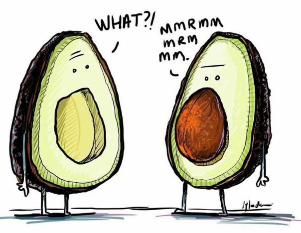 Avoca-Don't Talk With Your Mouth Full! 🥑 #thedailydunc - fun Fact: Today Was Guacamole Day! I Didn't Have Any But Did Have Some Avocado On A Burger I Had! Mmmm