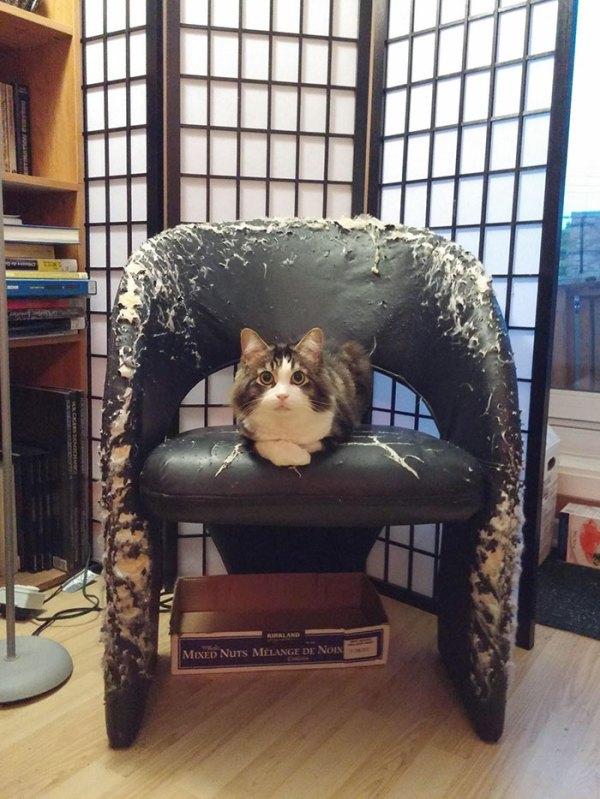 Throne Of Destruction