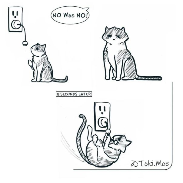 My 27 More Comics And 2 New Animations That Show What It's Like To Live With A Cat And A Dog