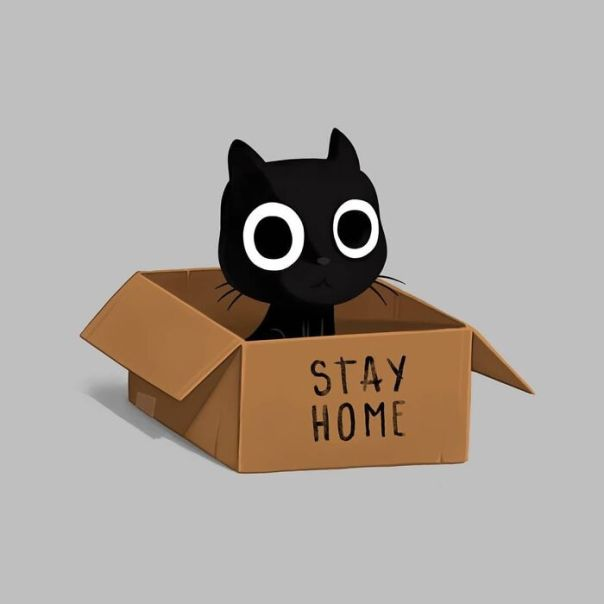 Just A Reminder To Stay Home 🏡 We're One Day Closer To Beat This! #stayhome #stayhomeclub #staysafe #cat #cute #kawaii #aww #awww #awesome #love #lovely #cardboard #illustration