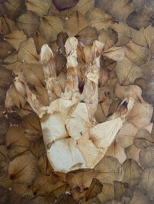 Hand, 2014