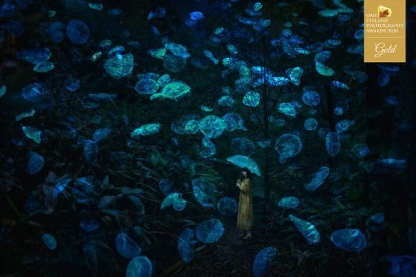 Princess Jellyfish By Hiromichi Shimizu